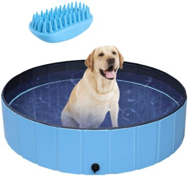 POTBY Best Dog Swimming Pools