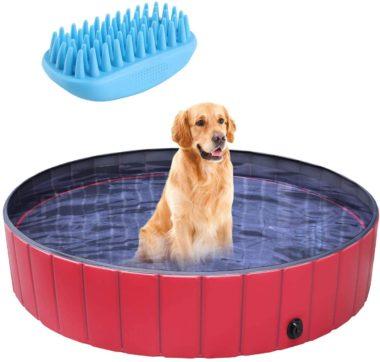pedy Best Dog Swimming Pools