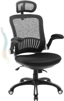 LORDWEY Big and Tall Office Chairs